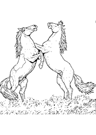 dessins à colorier coloriage cheval à imprimer