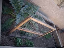 how to build a trellis make a pea trellis patio covers place