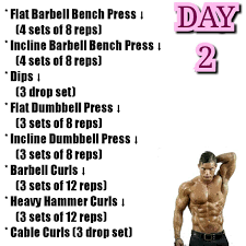 tavi castro workout routine monsterabs