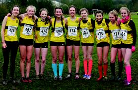 stratford ac youngsters end cross country season in style