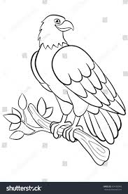 coloring pages wild birds cute smiling stock vector 434190949