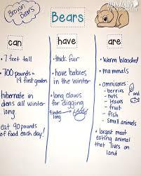 best 25 bear activities preschool ideas on pinterest bear