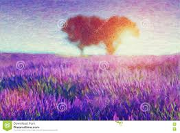 painting of lavender fields stock illustration image 41825771