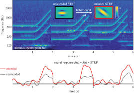 modelling auditory attention philosophical transactions of the