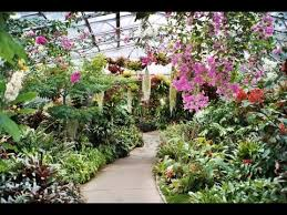 places to see in aberdeen uk duthie park winter gardens