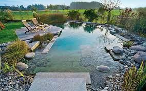 pool schwimmbecken gärten und schwimmteich