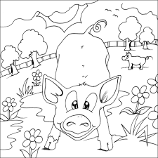 colouring pig picture