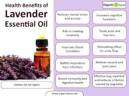 Tea Tree Oil Hair Loss 13 Surprising Benefits Of Lavender Essential Oil Organic Facts