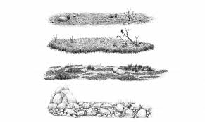 how to draw grass ground and rocks