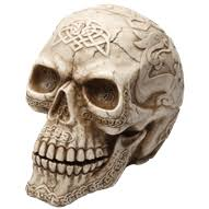 Celtic Skull - skull heads skulls celtic skulls knights skulls pirate skulls