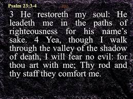 Thy Rod And Thy Staff Comfort Me Nourishment For The Soul Shepherd For The Soul God Feeds His