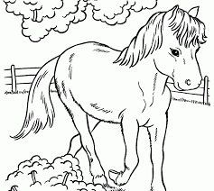 coloring sheets of a horse pictures to print and colour coloring pages horse to colour