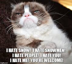 Hate Snow Meme - you re welcome imgflip