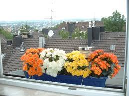 balkon blumen file balkonblumen jpg wikimedia commons