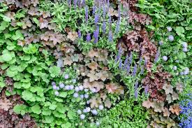 How To Make A Moss Wall by Build A Raised Bed In Pictures Gardenersworld Com
