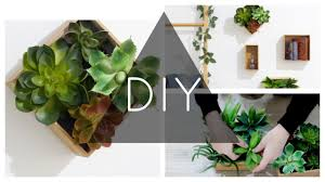 diy succulent wall planters youtube