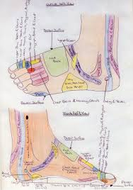 Foot Reflexology Map Relaxing Therapies Head 2 Toe