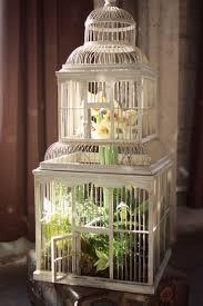 Decorative Bird Cages For Centerpieces by 1128 Best Decoracion Con Jaulas Images On Pinterest Bird Cages