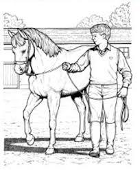 horse riding lessons horseback riding instructions horse riding