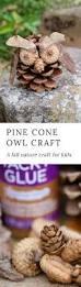 1693 best nature arts u0026 crafts images on pinterest holiday