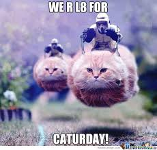 Caturday Meme - late for caturday by 8 hours by amish kotex meme center