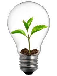 eco friendly light bulbs new range of light bulbs from bulbrite ecofriend