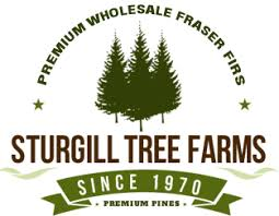 real table top trees wholesale tree farms
