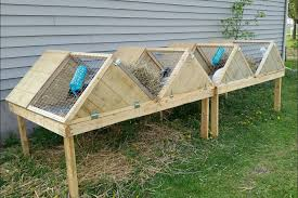 Plans For Building A Rabbit Hutch Outdoor Super Great A Frame Rabbit Hutch 6 Steps With Pictures