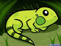 how to draw an iguana for kids iguanas pinterest pet store