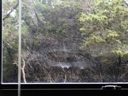 Window Cleaning Austin Tx Texas Glass Authority Austin Tx 78717 Yp Com