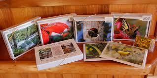 nature note cards box sets postcards ozark photography