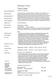 leadership resume samples team leader resume supervisor example