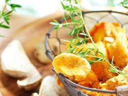 cuisiner des courgettes rondes courgettes rondes farcies aux cèpes et aux chanterelles recette
