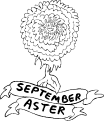 aster flower september coloring pages bulk color