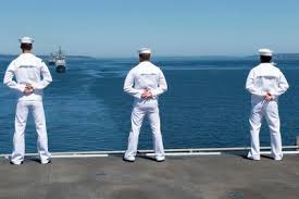 Counseling Chit Navy Form U S Letter Of Admonishment