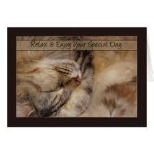 maine coon cat birthday cards greeting photo cards zazzle