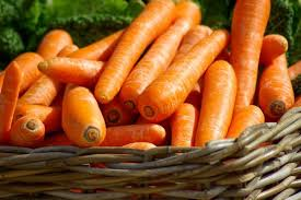 A List Of Root Vegetables - what vegetables can dogs eat list of good and bad vegetables for dogs