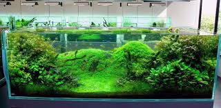 asian aquarium decorations