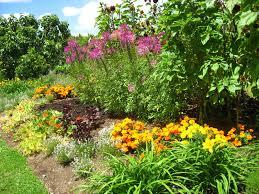 New Zealand Botanical Gardens Botanic Gardens Manukau Island New Zealand 011