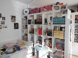 white built in bedroom shelving units over green murphy bed