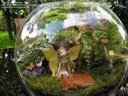 fairy garden ideas fun fairy garden with jean u0027s new ideas flea
