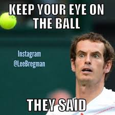 Andy Murray Meme - funny memes posted daily leebregman instagram photos and videos