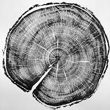 uinta national forest tree ring print handmade