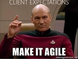 Agile Meme - last conference 2016 agile landscape presentation v1