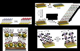 stimuli responsive supramolecular systems from dynamic