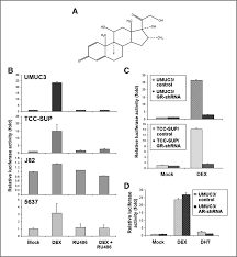 contrary regulation of bladder cancer cell proliferation and