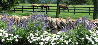 Kentucky landscapes images Landscape services landscaping consultations lawn maintenance jpg