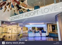 florida miami miami dade animal services pet adoption and
