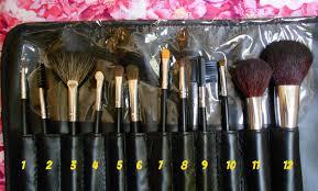 basic makeup brushes kit mugeek vidalondon