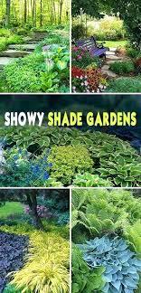 Shady Garden Ideas Shady Garden Ideas Showy Shade Gardens Tahaqui Club